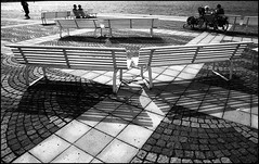 The bench lovers series #1. (flevia) Tags: shadow bw bench relax sweden stockholm bn riposo siesta tribute sverige scandinavia stoccolma biancoenero nikonfa panchina riddarholmen bwemotions v700 scannednegatives sigma24mmf28 bnscorci epsonperfectionv700photo flevia thebenchlovers elviramujcic swedeshlovetositinbenches ilfordfp4pushedto200