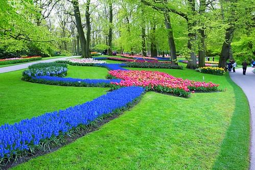 Keukenhof - Flower Path