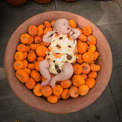 Sleepy pumpkin. (~~debbie~~) Tags: portrait fall dallas texas pumpkins arboretum 3months 1020 adelyn nikond700 nikon2470mmf28