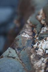 Hartland Quay Rocks (Matt.Cas) Tags: ocean light orange black reflection texture beach water rock contrast landscape seaside sand rust pattern natural sealife rockphotography brightcolours northdevon hartlandquay beachphotography
