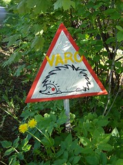 warning! (sparkleice) Tags: white green sign warning triangle hedge hedgehog thorn trafficsign varo siili twtoe sparkleice