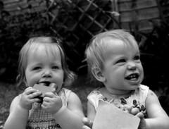Carys & Emily (steffanmacmillan) Tags: girls england blackandwhite baby london film girl garden hair babies arms bare teeth f100 nikonf100 ear chewing fujifilm chubby gurn scowling gurning earlsfield acros100 partydresses giantlegobrick