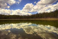 reflect (richietown) Tags: trees cloud lake reflection tree topf25 topv111 clouds canon topv555 topv333 yellowstonenationalpark wyoming hdr 30d sigma1020mm naturesfinest 3xp flickrsbest richietown isawyoufirst diamondclassphotographer flickrdiamond