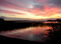 sunset  - 27 july (Per Ola Wiberg ~ Powi) Tags: nature water niceshot sweden july sunsets 100v10f harmony sverige juli lovelovelove stillness shiningstar 2007 sommar musictomyeyes mlaren wildcard naturegroup allyouneedislove beautifulearth apictureisworthathousandwords finegold thegalaxy mostintresting eker flickrstars magicofnature praiseworthy theworldinmyeyes goldenmix beautifulcapture flickrsmileys royalgroup thethreeangels nrlunda amazingshots diamondclassphotographer flickrdiamond lunarvillage flickrsilveraward heartawards diamondstars photostosmileabout flickrsun ~vivid~ bestsunriseandsunset nrlundabadet exemplaryshotsflickrsbestgroup goldawardonlynatureaward picturesworthathousandwords naturegoldaward thesuncard thirdlife qualitypixels 469photographers photographersgonewild freedomhawk oltusfotos extendelement thelightpainterssociety platinumgolddoubledragonawards doubledragonawards saariysqualitypictures addictedtonature fabulousplanet mygearandmepremium mygearandmebronze mygearandmesilver thewonderfulnatureworld mygearandme4silver platinumplanetevo esenciadelanaturaleza thenaturessoul peregrino27newvision