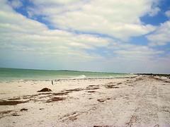 Caladesi_island_beach_01
