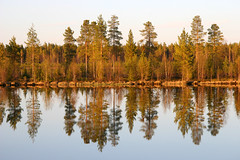 Early morning in Northern Finland.. (elysea100) Tags: morning trees water pine forest finland soe naturesfinest blueribbonwinner lakereflections flickrsbest naturesgallery shieldofexcellence platinumphoto anawesomeshot aplusphoto holidaysvacanzeurlaub superbmasterpiece diamondclassphotographer flickrdiamond excellentphotographerawards theunforgettablepictures