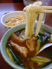 Curry udon in Kyoto (bananagranola (busy)) Tags: food japan japanese udon kyoto curry noodle japanesefood washoku whetgobblefrolic