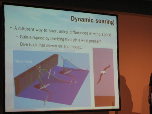 Hacking the atmosphere: Dynamic soaring