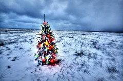 Cape Cod Beach Christmas Tree (HDR) (Chris Seufert) Tags: lighthouse beach ma sand capecod christmastree chatham bostonist southchathamcapecodbeachchristmastree gettyholidays2010