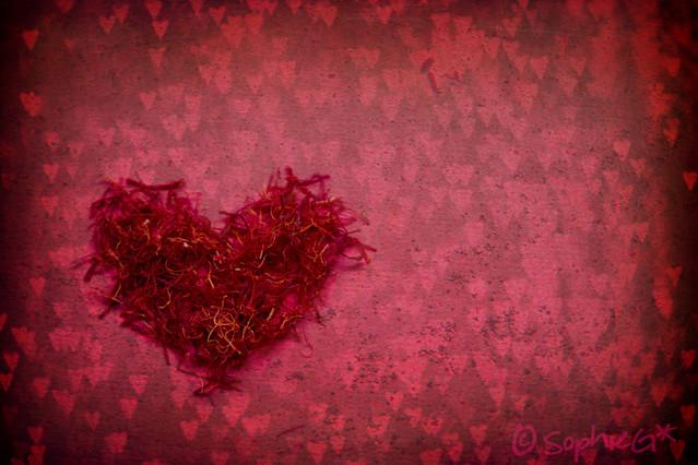 78/365: Anyone who had a heart
