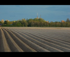 Home town sky-line (powerfocusfotografie) Tags: light holland skyline potatoes nikon dof groningen agriculture henk justbeforesunset potatofield usquert powerfocus aardappelveld shadowylight streekoflight
