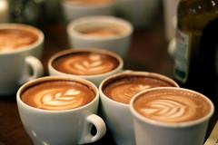 Coffee Kids latte art throwdown (RobsonBarista) Tags: art coffee kids milk heart culture foam tulip robson championships latte cappuccino barista caffe 2010 wbc