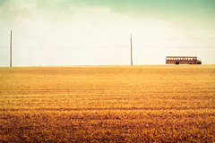 The School Bus. (CarolynsHope) Tags: school orange bus texture field rural vintage landscape open country minimal simplicity schoolbus minimalism simple skeletalmess carolynshope