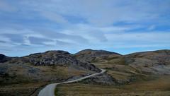 kangerlussuaq - russell glacier volkswagen road (Vida Morkunas (seawallrunner)) Tags: travel cruise greenland hurtigruten cwall kangerlussuaq westgreenland july2010 vestgronland westerngreenland ataleoftwoicelands returntoeurope