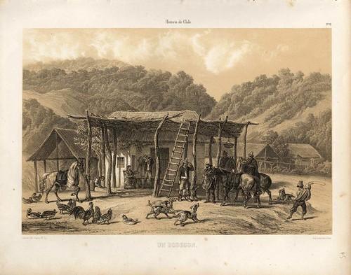 015-Un bodegon-Atlas de la historia física y política de Chile-1854-Claudio Gay