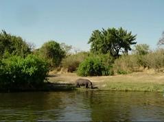 2747 (satinam2) Tags: africa botswana namibia himba