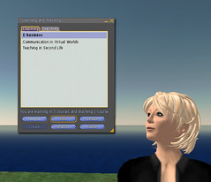 Learning and Teaching in Second Life