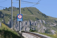 Leonardo a encore svi.. (Philou Philou) Tags: suisse leonardodavinci villarssurollon vitruve