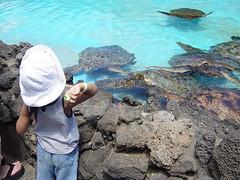 DSC07977 (BossaNova2001) Tags: birthday hawaii waikiki 2007 4yrs mitsuki 2007sep