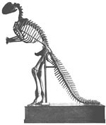 Dinosaur skellington