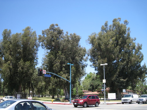 North Hollywood Park intersection