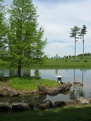 Japanese garden (Conor Davitt) Tags: garden japanese arboretum dawes