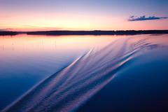 The wake (96dpi) Tags: sunset water river landscape wasser wake sonnenuntergang fluss landschaft potsdam brandenburg havel kielwasser