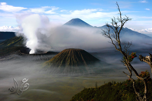 Bromo from Mount Penanjakan
