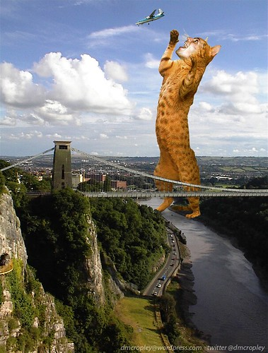 Dave Cropley/Clifton Suspension Bridge Big Cat Sighting