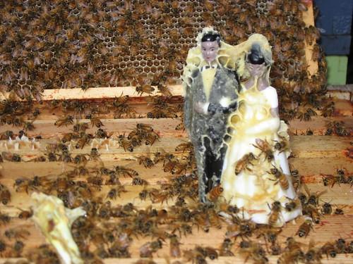 Beekeeping 2316