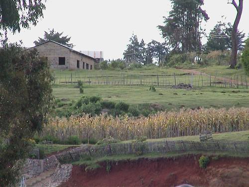 Landscape Farm