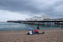 Brighton Breeze #79