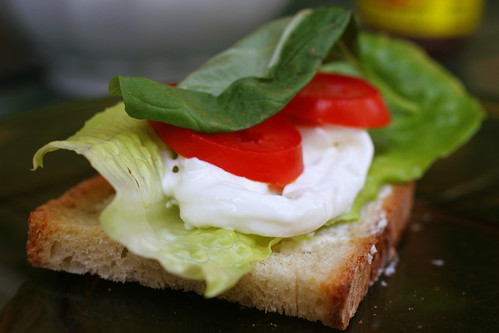 I made a sandwich