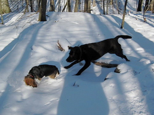 2008_01_03_Hiking_Stony - 010