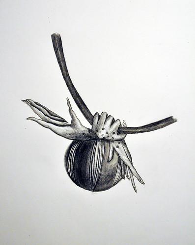 papamani //jewel //sketch (santagoreva) Tags: flower fashion illustration creativity design sketch hands drawing evolution mani jewellery collection poppy bud jewel mutation papaveri