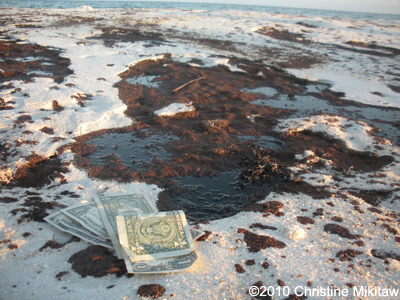 BP OIL SPILL Disaster