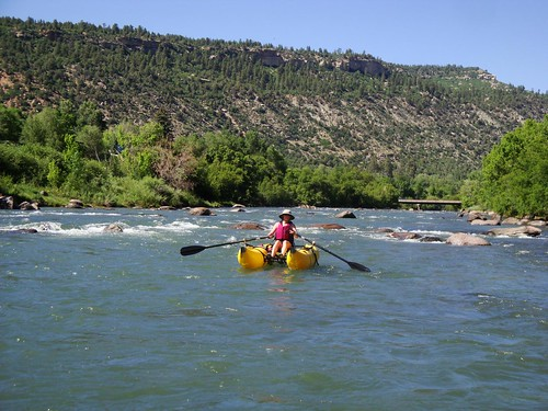 on the Animas #1