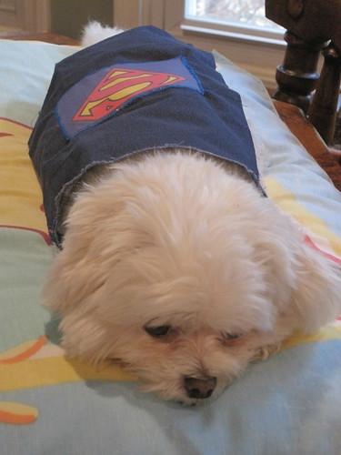 Super Maggie!