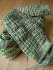 Lorna's Laces - Envy Socks