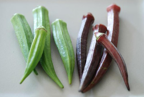 okra by cookthink