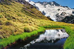 Sealy Tarns (Daniel Murray (southnz)) Tags: newzealand mountain snow reflection ice water grass landscape nationalpark scenery glacier nz mtcook southisland tarn tussock footstool mountcook aoraki sealy southnz eos50escanfromprint