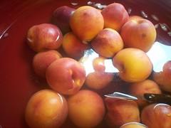 peaches-024