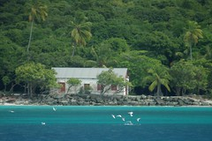 Beach Front Property (cwgoodroe) Tags: virgin gorda british island vbi virgingorda carribean sea sun sand surf bluewater summer boat vessel fun snorkel fish model thebaths baths bath usvi virginislands limnos sunsets rocks lighting chicken ruins hottub sailboat sail birds sportsillustrated nature beauty ocean school color hot heat tugboat pentax pentaxist digital cool bvi endofsummer water islandparadise