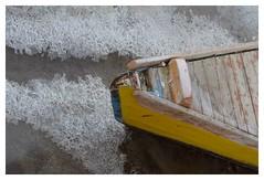 rompighiaccio (paolo agostini) Tags: barche laguna prue chioggia ghiaccio valli colorphotoaward
