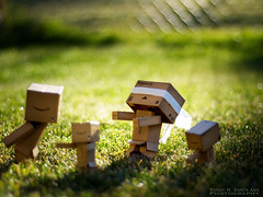 107/365: Early Morning Frolic. (Randy Santa-Ana) Tags: game toys tag earlymorning danbo danboard 365daysofdanbo