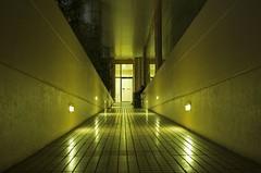 camino de luz...  / path of light... (Ricardo Martinez Fotografia) Tags: light luz d50 nikon camino path spectnight