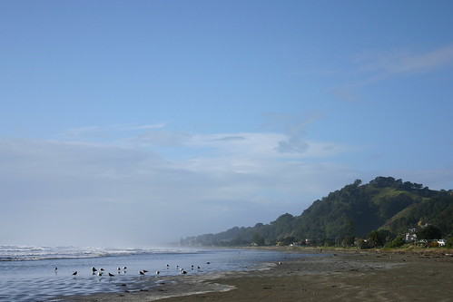 Ohope Beach Looking Towards the East Cape