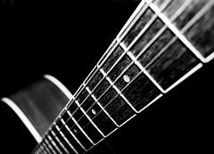 CRW_4544 copy (~jds eva~) Tags: blackandwhite bw brown white black sepia blackwhite guitar instrument acoustic strings duotone svart svarthvtt hvtt brnhvtt