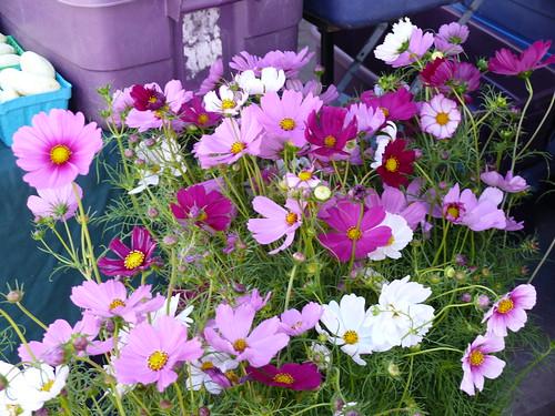 072107flowers