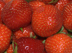 Strawberry (Funchye) Tags: red rot catchycolors rouge rojo strawberry rd rosso fragola framboise erdbeeren jordbr fresa fragaria aardbei  naturesfinest poziomka maduixa ilek mansikat morangueiro isawyoufirst    fraula smultronslktet